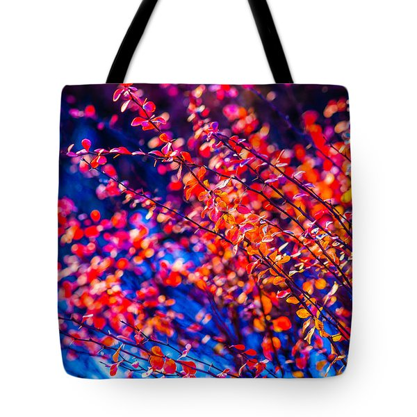 Tote Bag featuring the photograph Cotoneaster In Winter by Alexander Senin