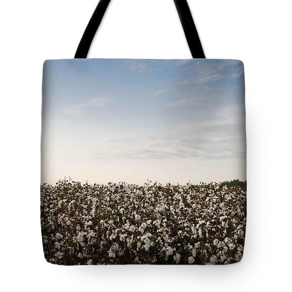 Cotton Field 2 Tote Bag