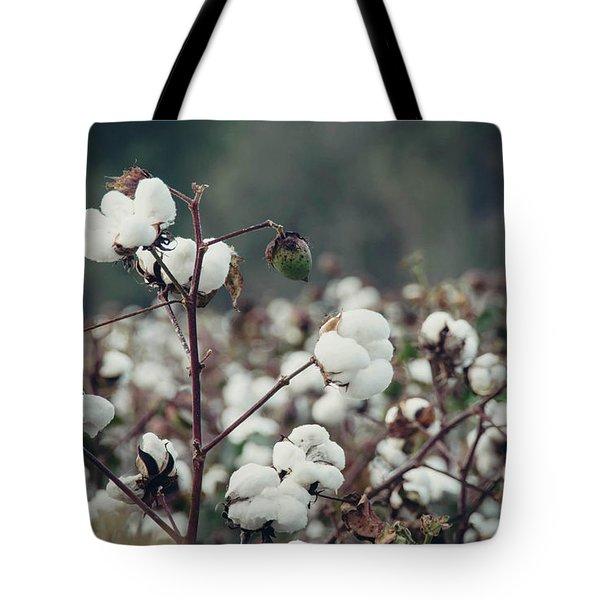 Cotton Field 5 Tote Bag