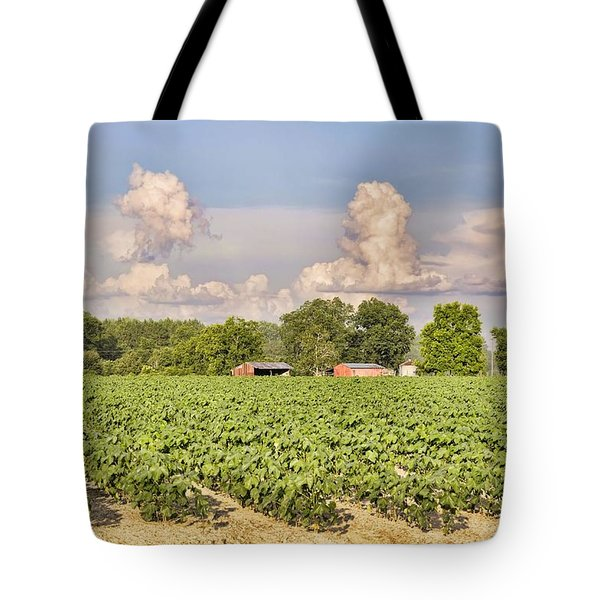 Tote Bag featuring the photograph Cotton Hasn't Flowered Yet by Jan Amiss Photography