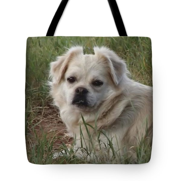 Cotton In The Grass Tote Bag