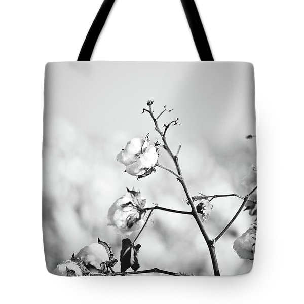 Cotton Production - Bw Tote Bag