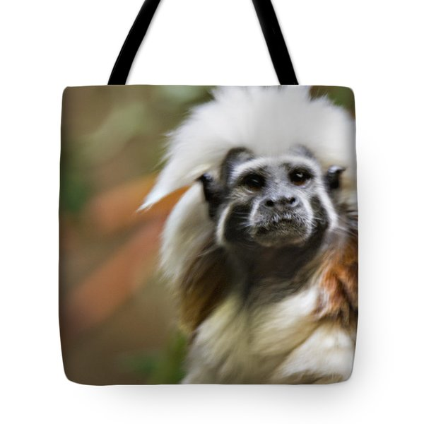 Cotton-top Tamarin _ 1a Tote Bag