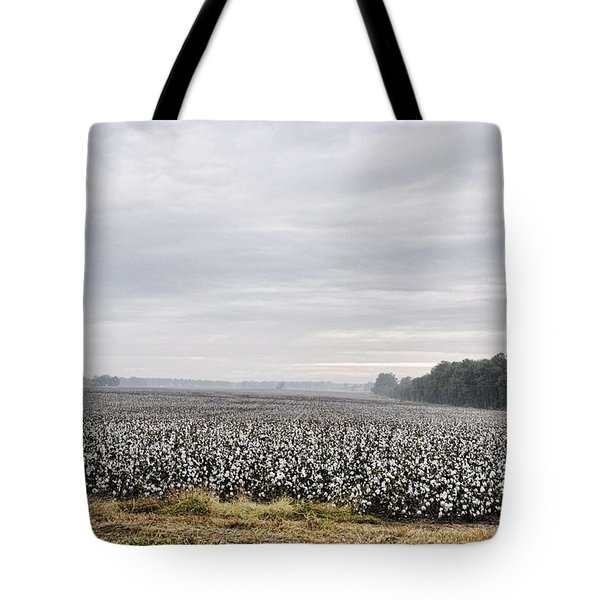 Tote Bag featuring the photograph Cotton Under The Mist by Jan Amiss Photography