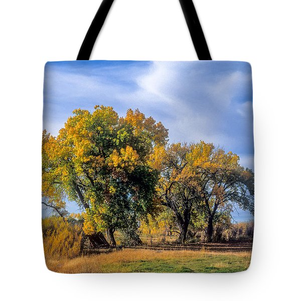 Cottonwood #1 Tree On Ranch Land In Colorado Fall Colors Tote Bag by John Brink
