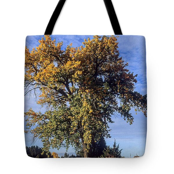 Cottonwood #3 Colorado Ranch Country In Fall Tote Bag by John Brink