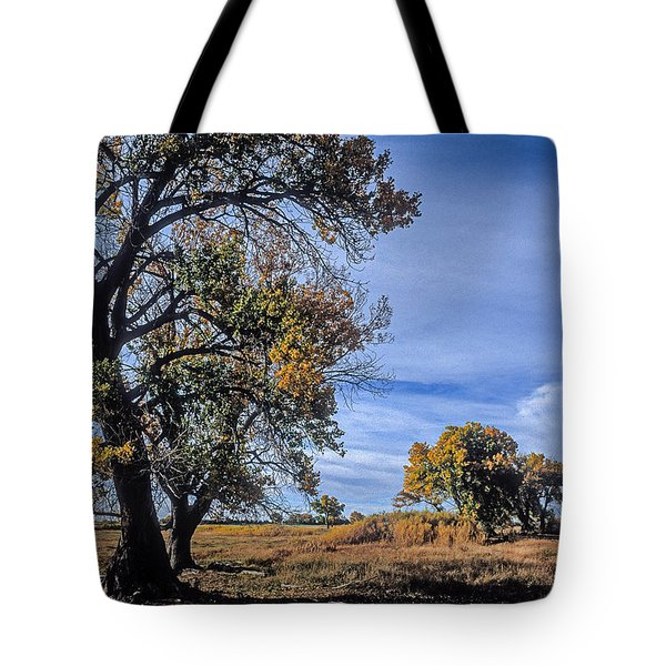 Cottonwood #5 Fall Ranch Colorado Blue Sky Tote Bag by John Brink