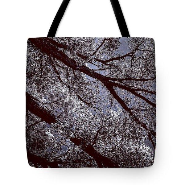 Cottonwood Energies Tote Bag