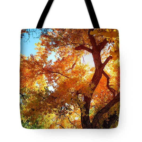 Cottonwood Glow Tote Bag