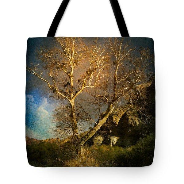 Cottonwood Tree Tote Bag