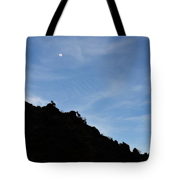Counting Sheep Tote Bag by Scott Cunningham