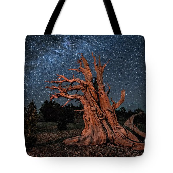 Tote Bag featuring the photograph Countless Starry Nights by Melany Sarafis