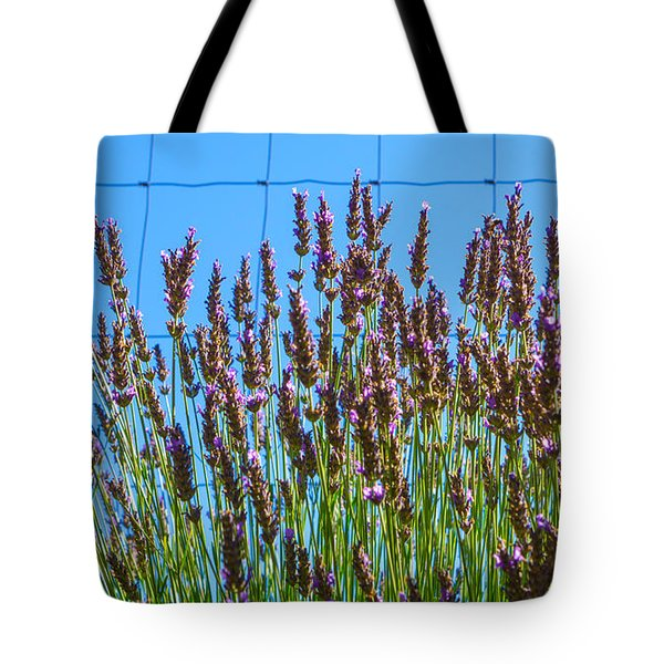 Country Lavender IIi Tote Bag