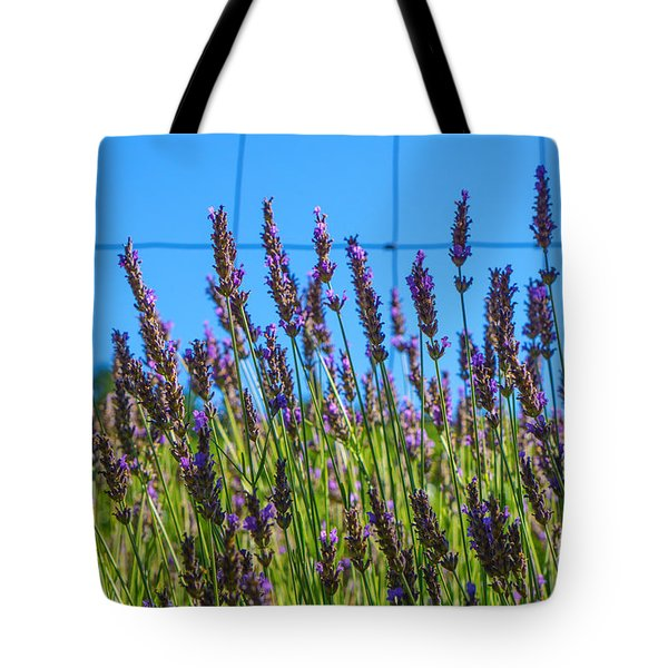 Country Lavender Vii Tote Bag