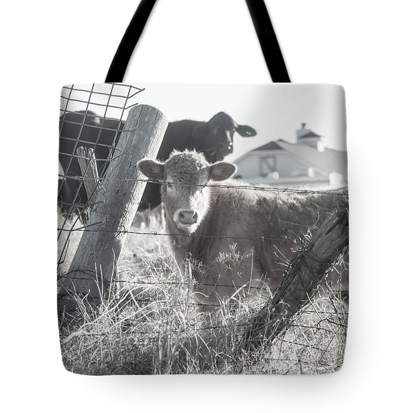 Tote Bag featuring the photograph Country Living For These Cows by Toni Hopper