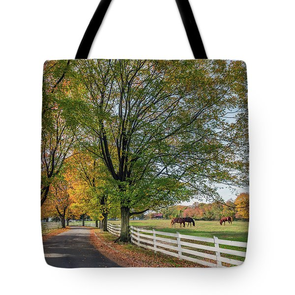 Country Road In Rural Maryland During Autumn Tote Bag