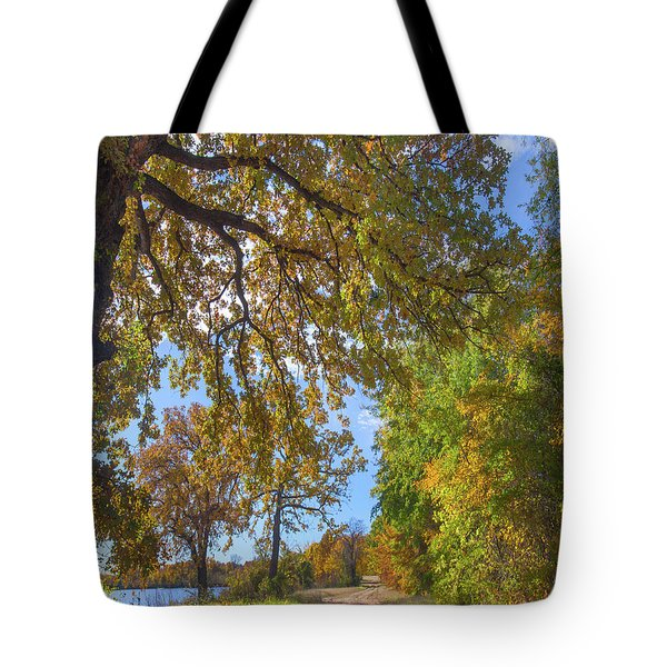 Country Road Tote Bag by Tim Fitzharris