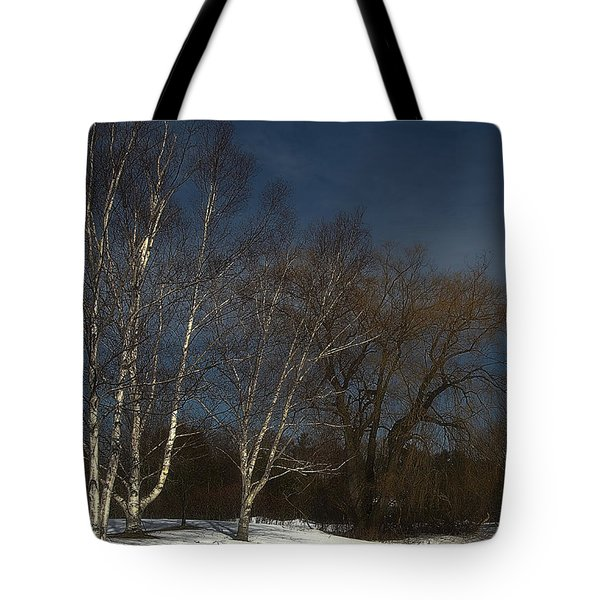 Country Roadside Birch Tote Bag
