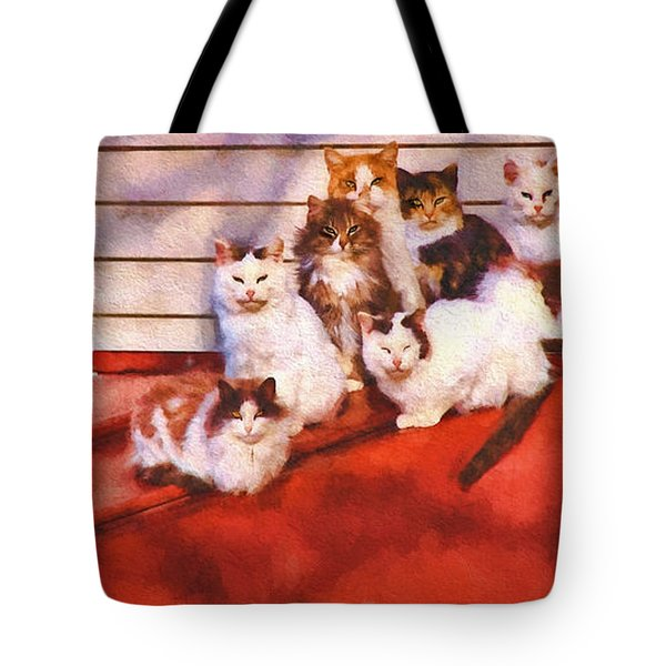 Countryside Cats Tote Bag