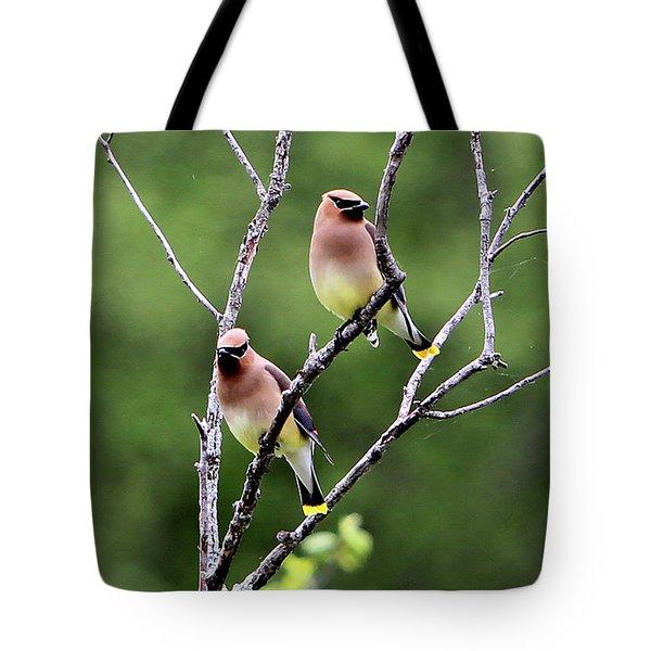 Couple Cedar Waxwing Tote Bag by Marle Nopardi