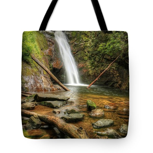 Courthouse Falls Tote Bag