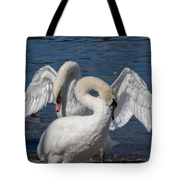 Courting Mute Swans Tote Bag