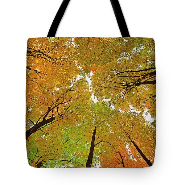 Tote Bag featuring the photograph Cover Up by Tony Beck