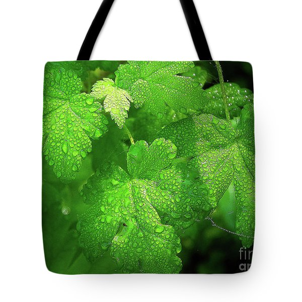 Covered In Rain Drops Tote Bag by Michele Penner