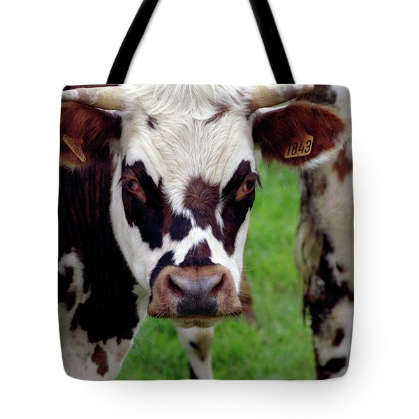 Cow Closeup Tote Bag