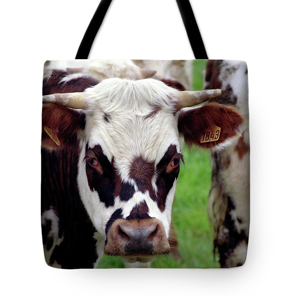 Cow Closeup Tote Bag