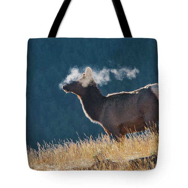 Cow Elk With Steamy Breath Tote Bag