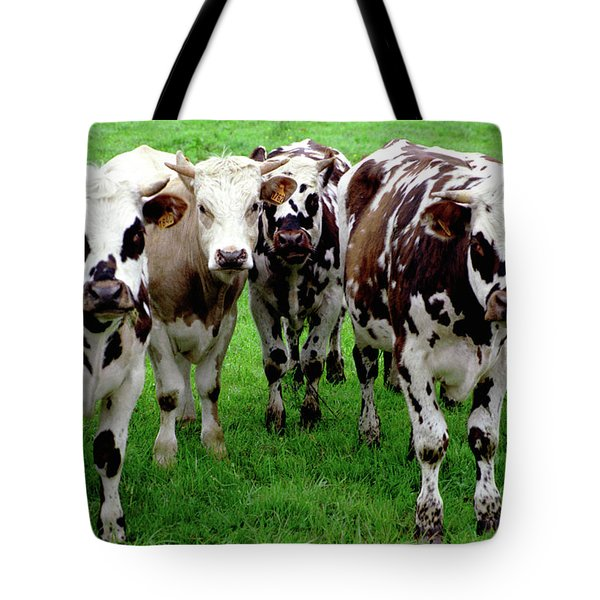 Cow Group Tote Bag