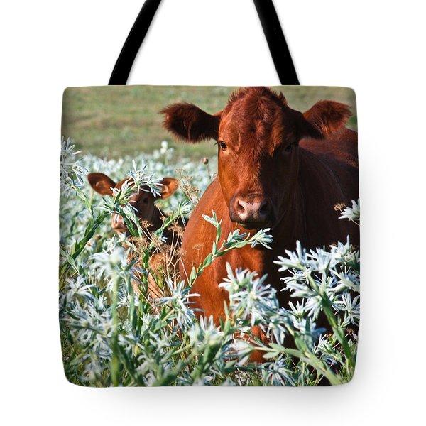 Cow Hide Tote Bag