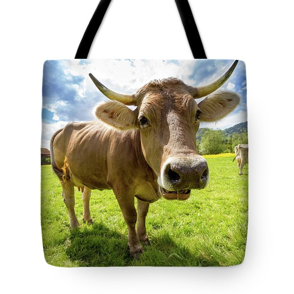 Tote Bag featuring the photograph Cow In Meadow by MGL Meiklejohn Graphics Licensing