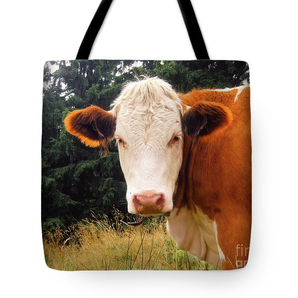 Tote Bag featuring the photograph Cow In Pasture by MGL Meiklejohn Graphics Licensing