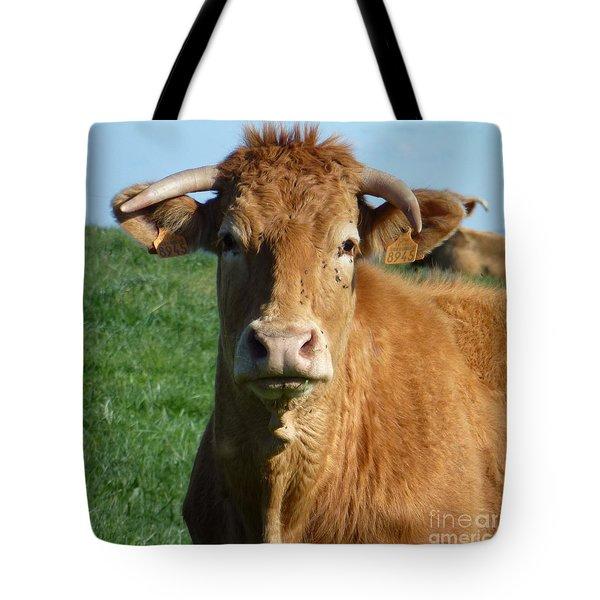 Cow Portrait Tote Bag by Jean Bernard Roussilhe