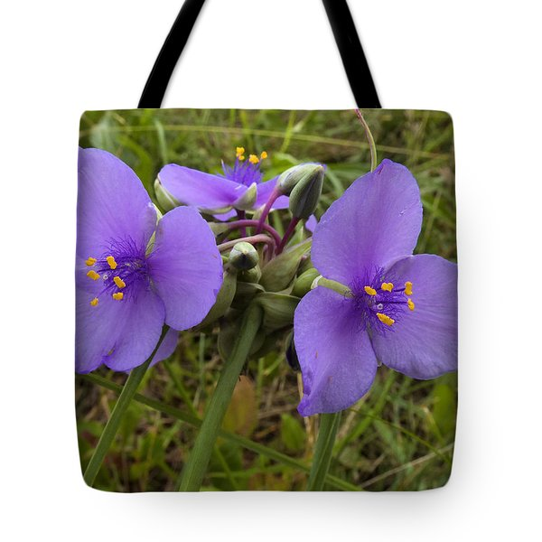 Cow Slobber Tote Bag by Scott Kingery