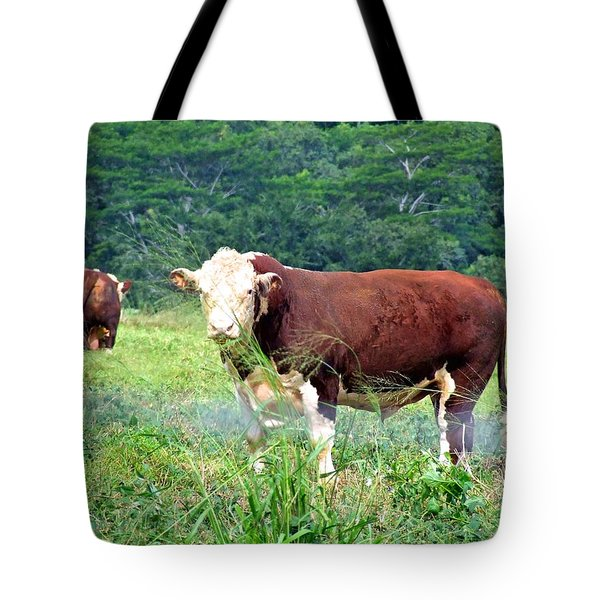 Cow Today Tote Bag