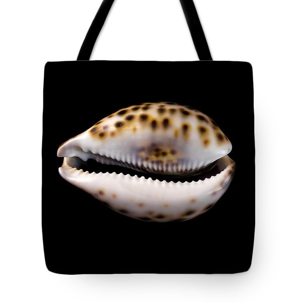 Cowry Sea Shell Tote Bag by Jim Hughes