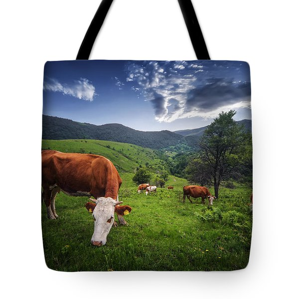 Cows Tote Bag by Bess Hamiti