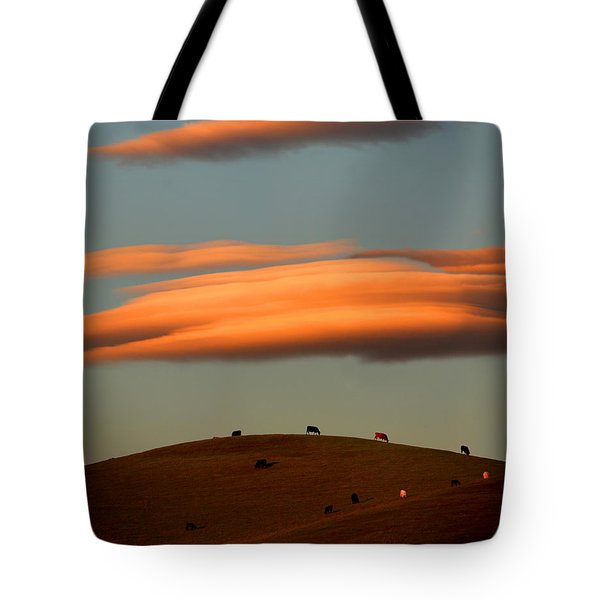 Cows Graze Under The Sunset Clouds In Sonoma County California Tote Bag by Wernher Krutein