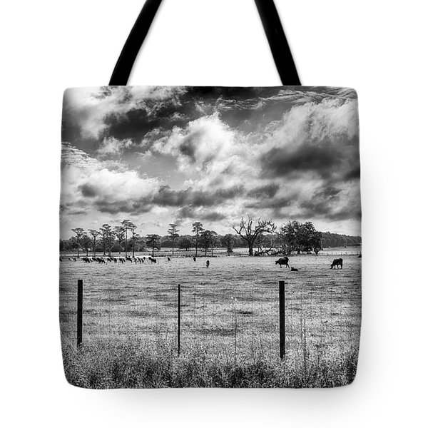 Tote Bag featuring the photograph Cows by Howard Salmon