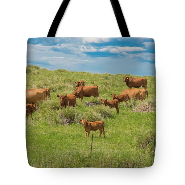 Cows In Field 1 Tote Bag