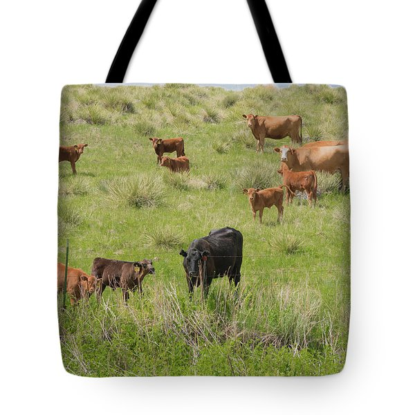 Cows In Field 2 Tote Bag