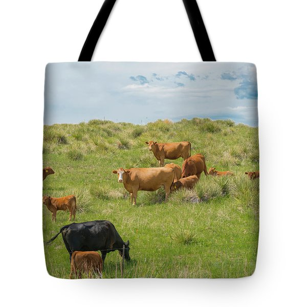 Cows In Field 3 Tote Bag