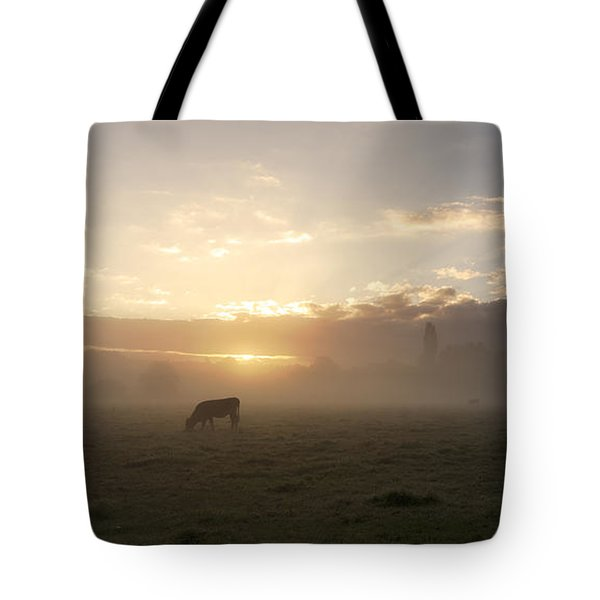 Cows In The Mist Tote Bag