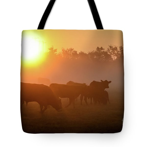 Cows In The Sunrise Mist Tote Bag