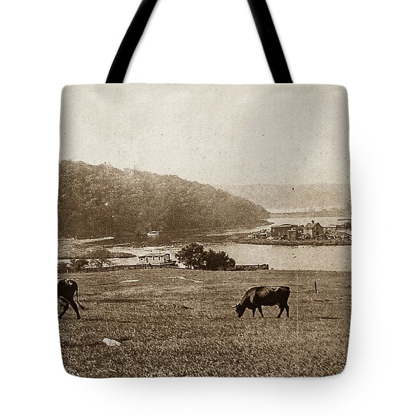 Tote Bag featuring the photograph Cows On Baker Field by Cole Thompson
