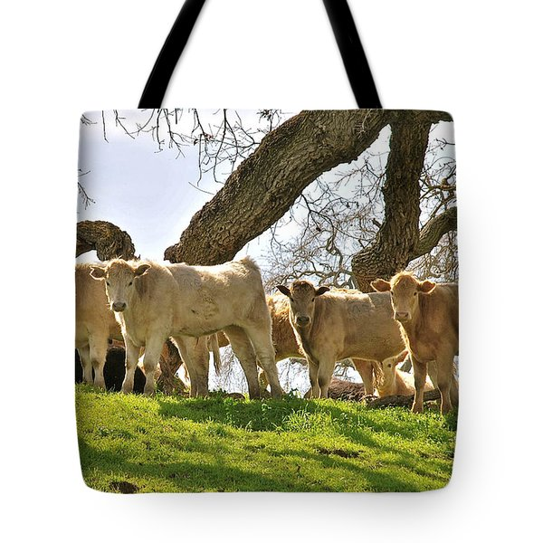 Cows Under Oak #2 Tote Bag