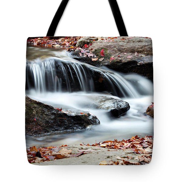 Coxing Kill In Autumn #1 Tote Bag by Jeff Severson